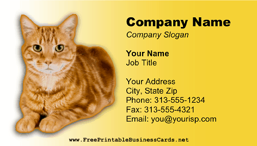 Cat Photo Yellow business card