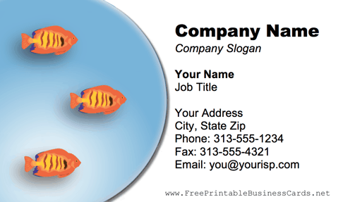 Orange Fish business card