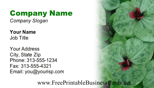 Plants business card