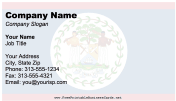 Belize business card
